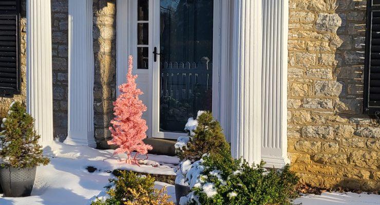 A pink, plastic christmas tree sits on a snowy stoop in Shepherdstown.