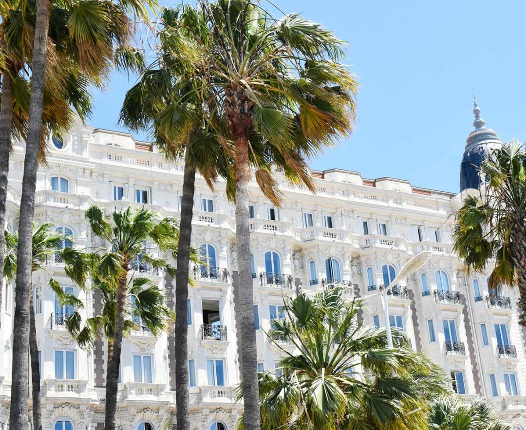 Cannes-Shopping-Palms