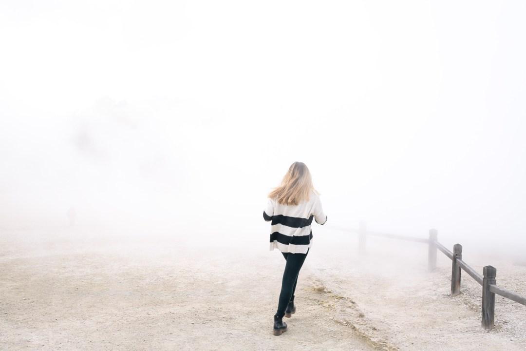 rotorua-fog
