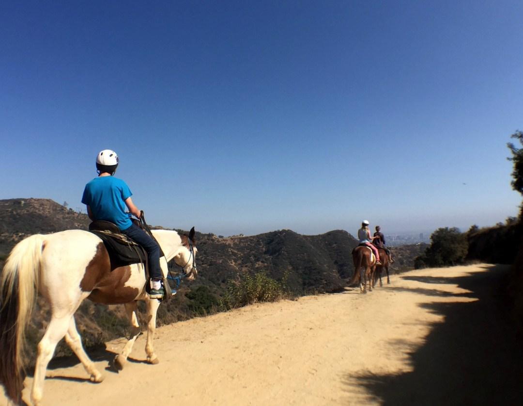Horses-on-Hollywood-Hike