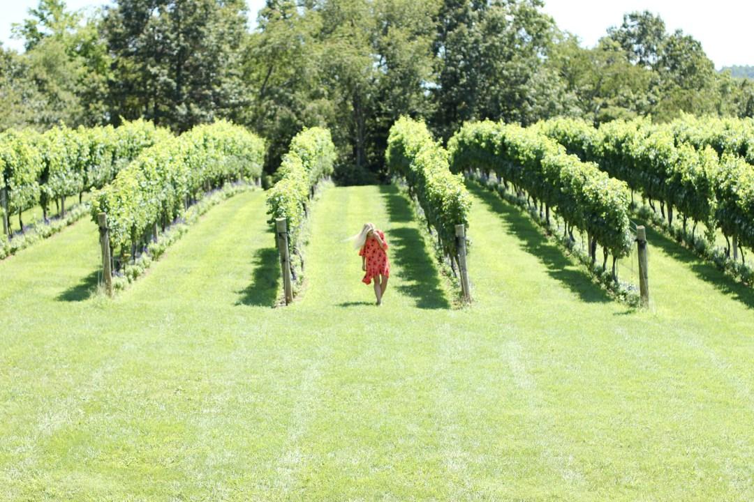 virginia-wine-country