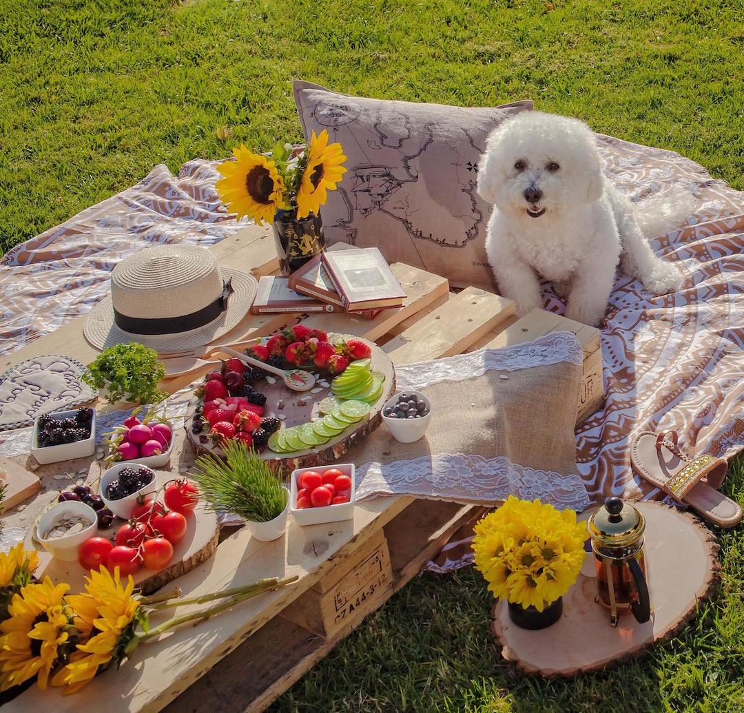 decor-picnic-table