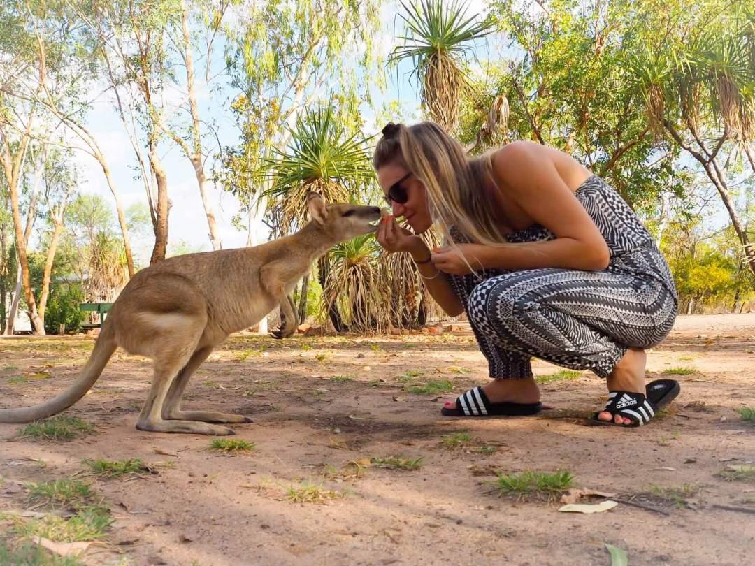 we-are-travel-girls-kangaroo