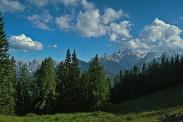 mountain-and-trees-slovenia