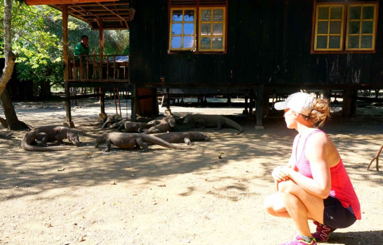 5 REASONS TO EXPLORE KOMODO NATIONAL PARK - Dragon3