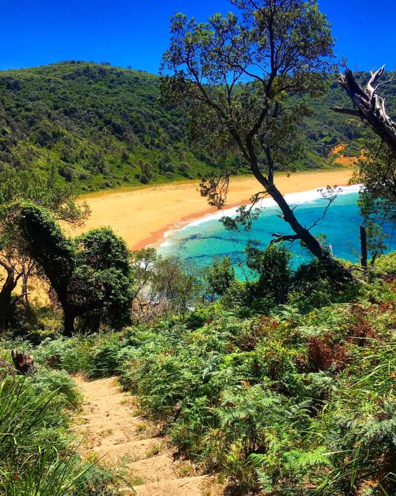 AUSTRALIA- JERVIS BAY'S BEST BEACHES SteamersBeach2_Australia