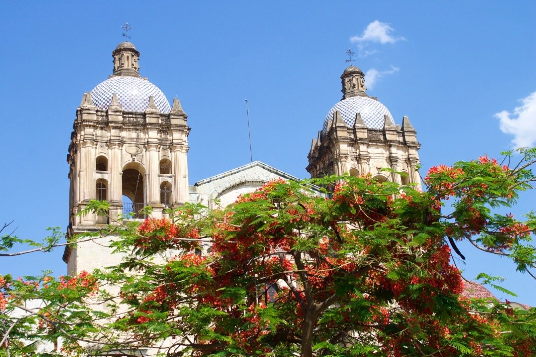 A local 39 s guide to oaxaca city mexico we are travel girls for Oaxaca to mexico city