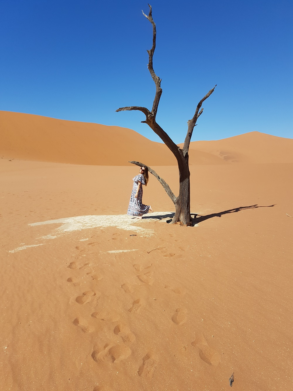 5 REASONS WHY YOU HAVE TO VISIT THE NAMIB DESERT
