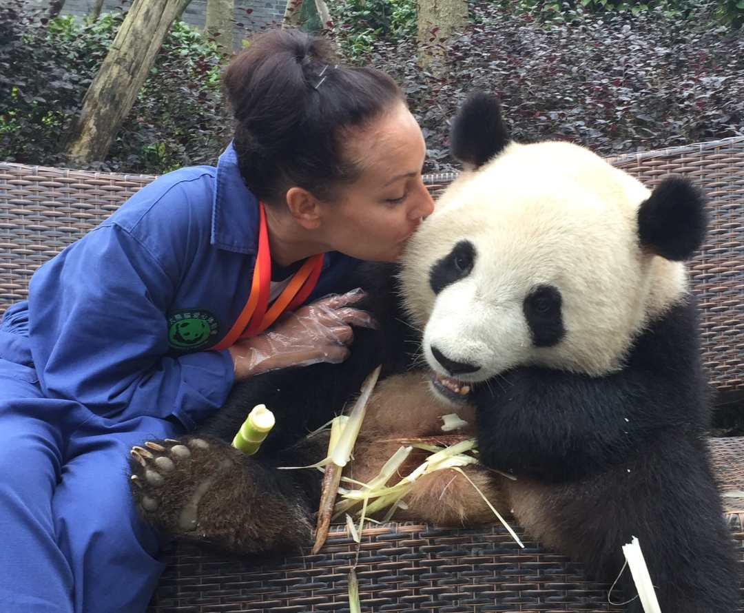 A DREAM DAY WITH PANDAS IN CHENGDU, CHINA