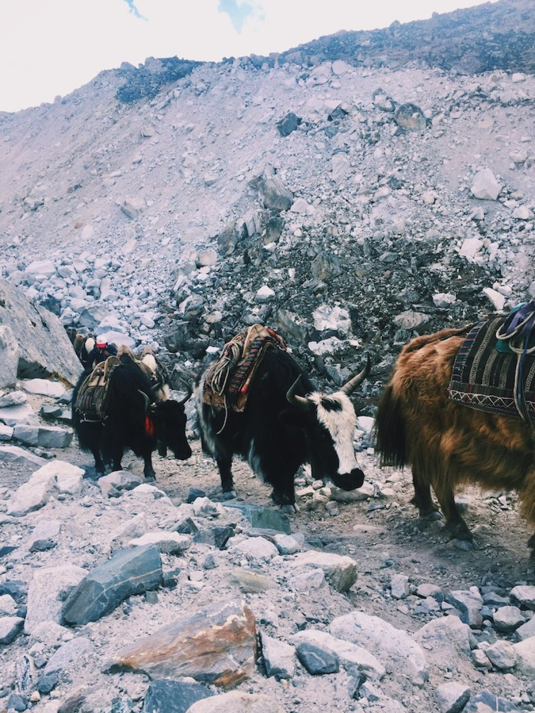 5 Reasons You Should (And Can) Hike Everest Base Camp