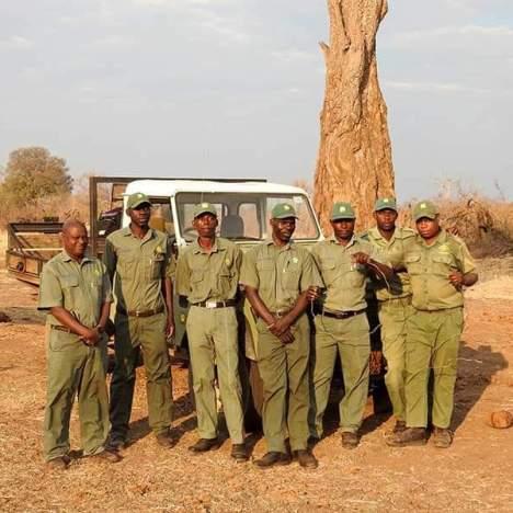 KAZA TFCA Steps Up for large-scale elephant survey