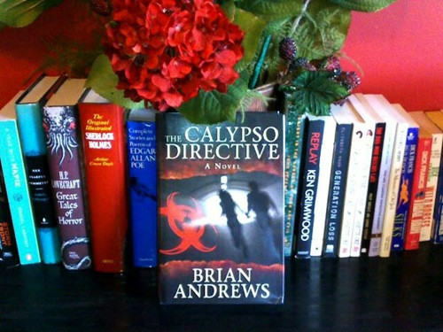 The Calypso Directive: A Novel by Brian Andrews