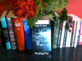 Finding Poe by Leigh M Lane