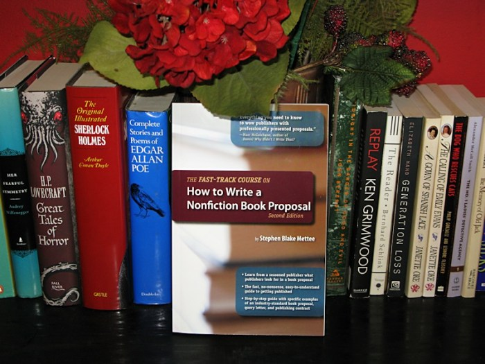 stephen blake mettee the fast track course on how to write a nonfiction book proposal