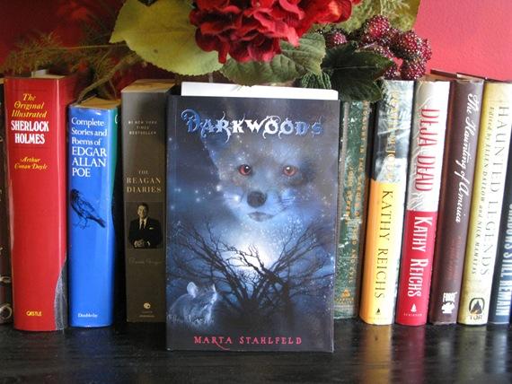 Darkwoods by Marta Stahlfield