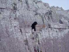 Rock climbing Bella, Pembrokeshire