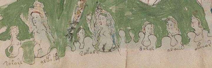 Britsken geleyrden löst eywenold Voynich-mystery up