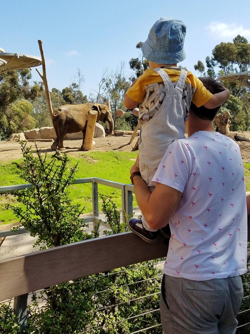 лучший в мире зоопарк