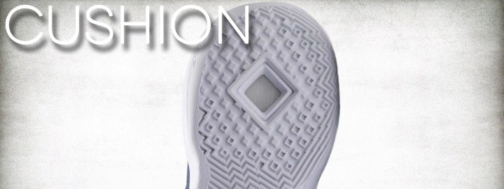 Nike LeBron Ambassador X performance review cushion