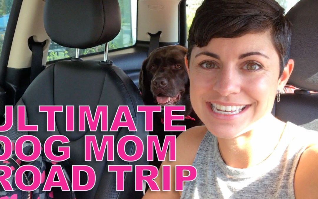 BlogPaws 2017: The Ultimate Dog Mom Road Trip