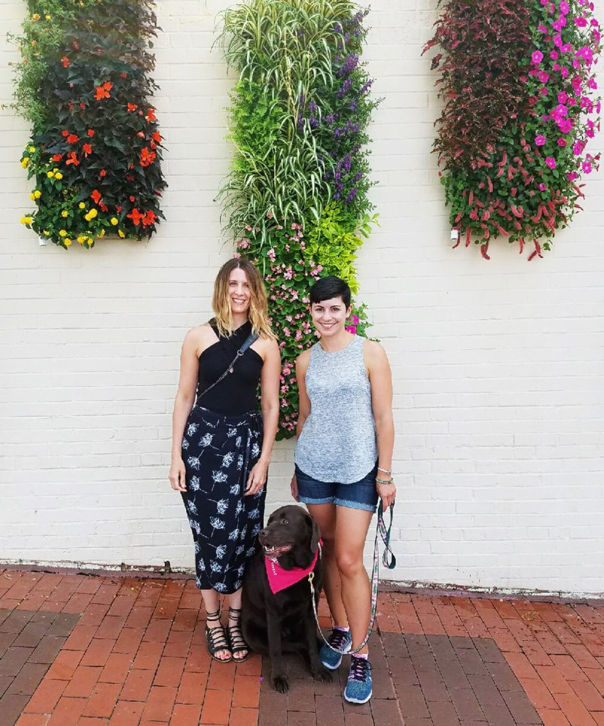 Dog Friendly Raleigh Is Full Of Art And Design