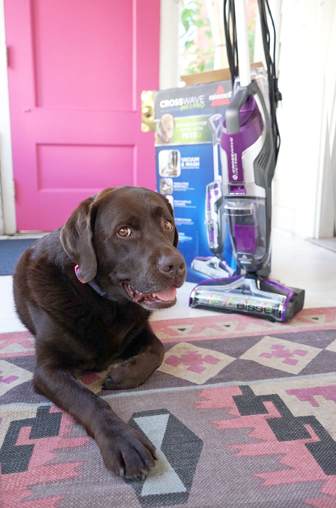 Reviewing BISSELL CrossWave Pet Pro