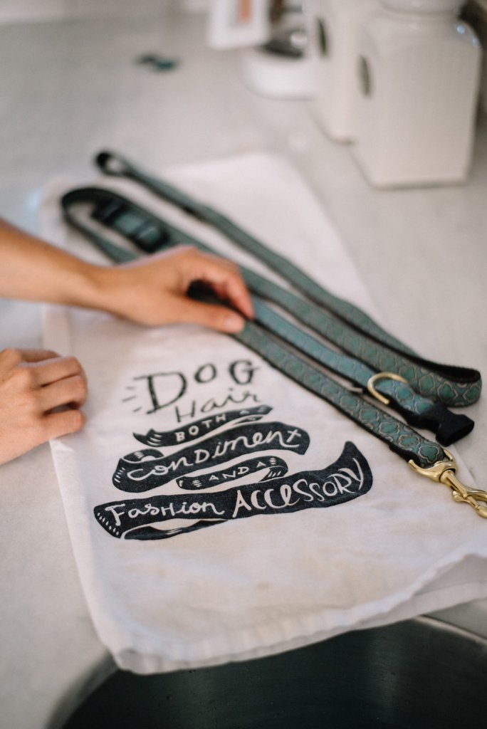 How To: Hand Wash Your Dog Collar