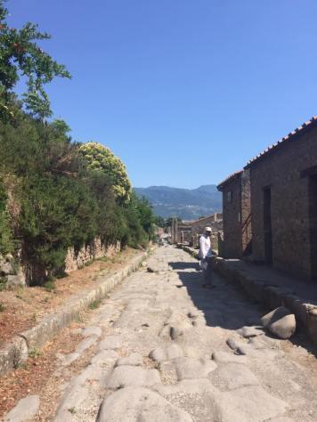 Pompeii Ruins 23