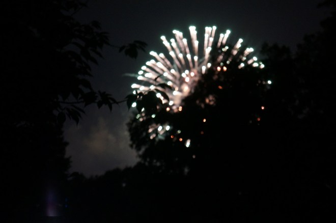 ^^They had fireworks after the concert which, for us, were located directly behind a huge tree. Still pretty though!