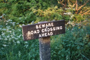 "A wooden road sign reading ""Beware Road Crossing Ahead"""