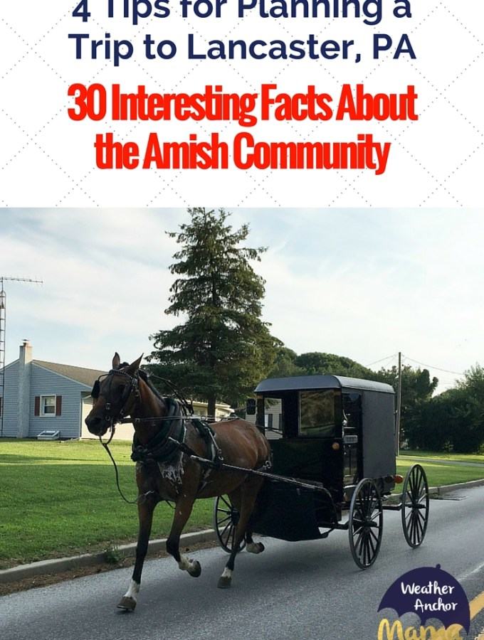 4 Tips for Planning a Trip to Lancaster, PA, facts about amish community (1)