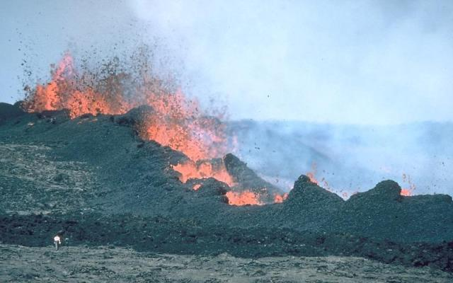A series of fissures ejects lava near the summit of Mauna Loa in 1984. Image: Griggs, J.D. / Public Domain / USGS