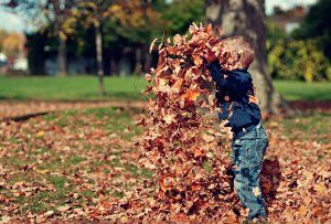 Child throwing leaves up in the air