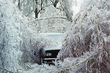Ice storm that has weighed down trees to trap car