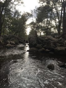 local waterways in full flow