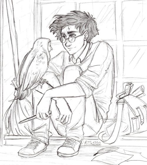 6412ae1b187cb2136a645d126e833428--harry-potter-art-fanart.jpg