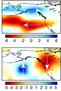 Top: zonal (west-to-east) wind anomalies at 250mb during 2013. Bottom: same as top, but for meridional (south-north) winds. Note that the westerly winds associated with the Pacific storm track are shifted well to the north. (Swain et al. 2014)