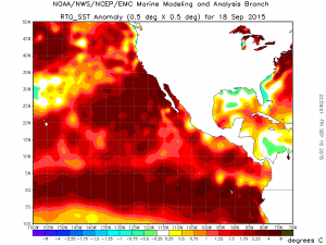 Extreme, record-breaking ocean warmth continues across the entire northeastern Pacific. (NOAA)