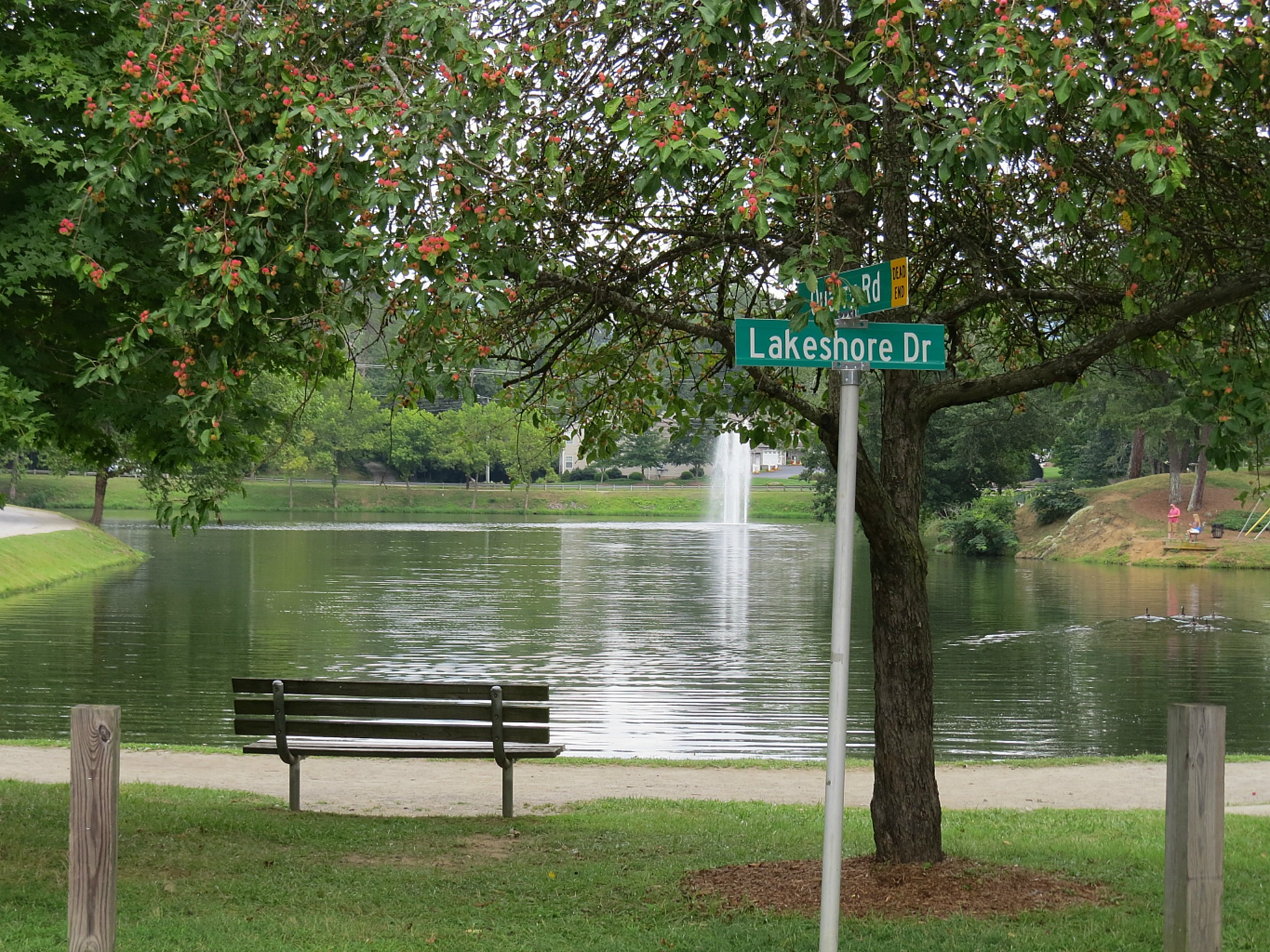 Town Of Weaverville NC Lakeshore Drive