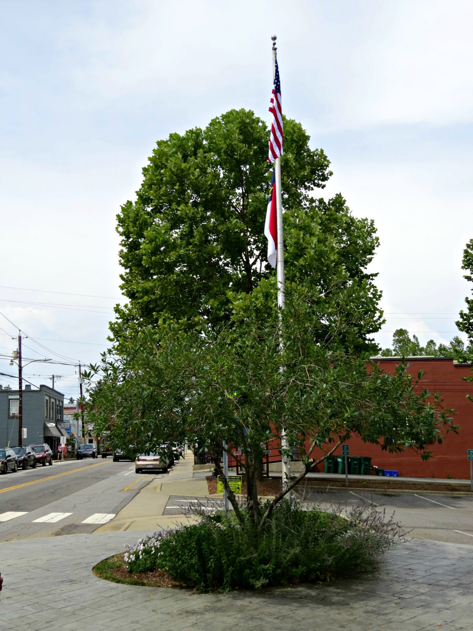 Town Of Weaverville NC Town Hall Flag