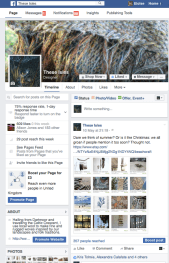 Promoting mine and others' work through Facebook