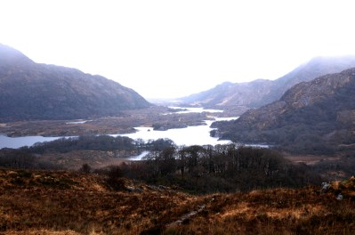 Killarney National Park 10