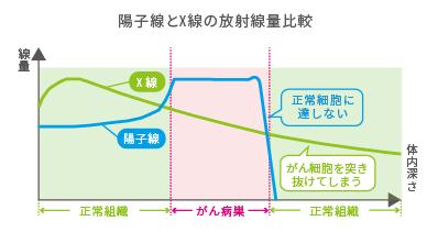 陽子線とX線の放射線量比較