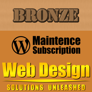 Bronze WordPress Maintenance Plan