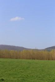Canon EF 24-70mm 4 L IS USM Objektiv Testbericht - Landschaft Landscape