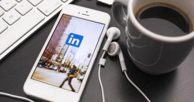 Historique linked in : Le professionnalisme des réseaux sociaux