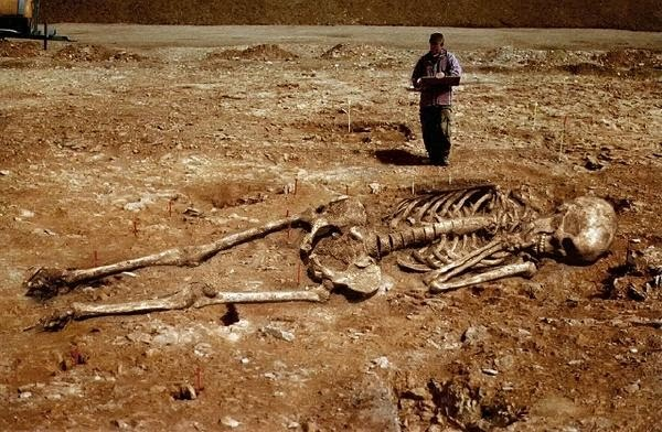 divovi- more- okean- kostur 1