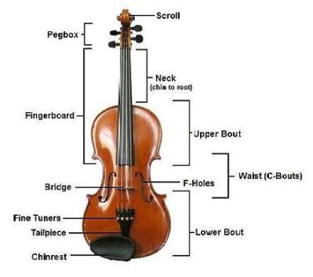 Best Beginner Violin