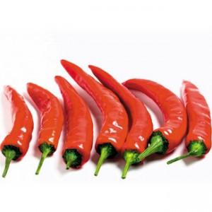 продукты сжигающие жиры