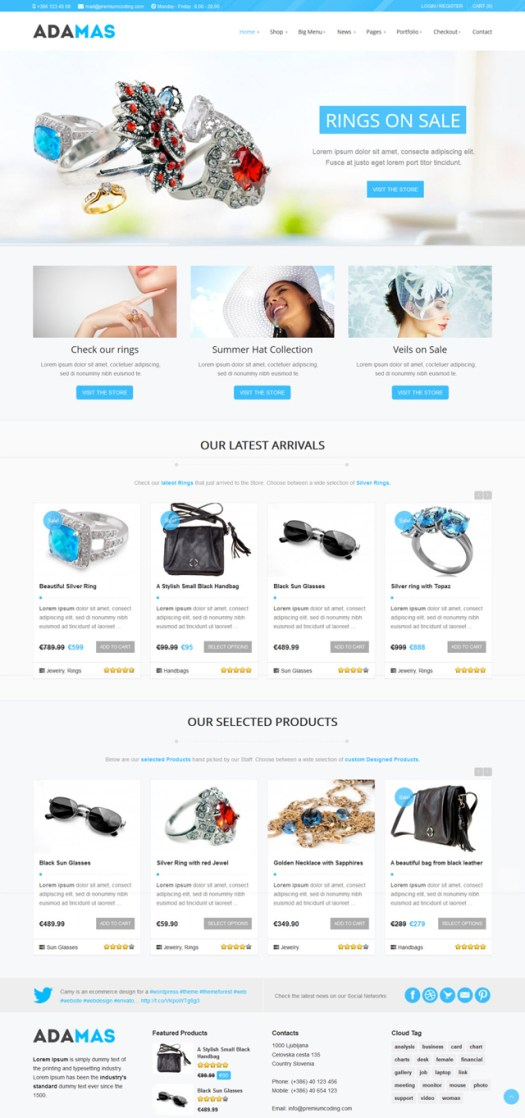 WordPress Modern WooCommerce Themes